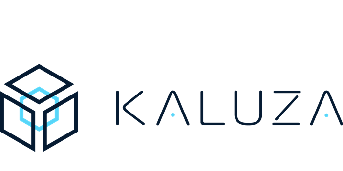 Kaluza | Future of Utilities