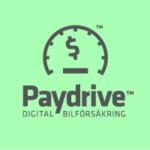 Paydrive Company Logo