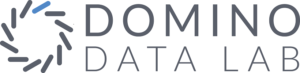 Domino Data Lab Logo | TechNOVA